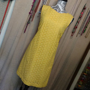 Loft Yellow Eyelet Mini Summer Dress Sz. 4